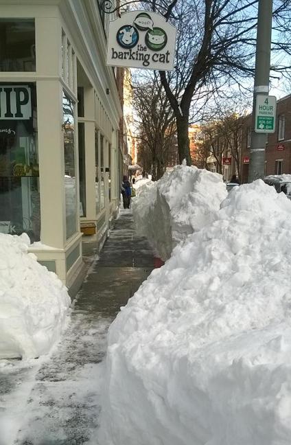 Salem Snowpile